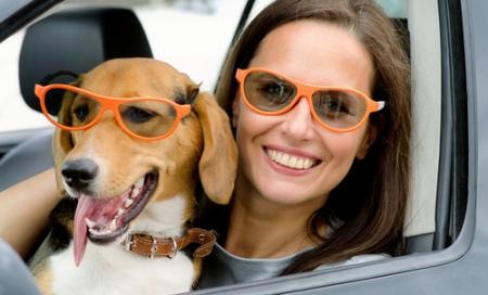 Woman driver holding dog, both wearing orange framed sunglasses